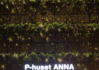 P-huset Anna